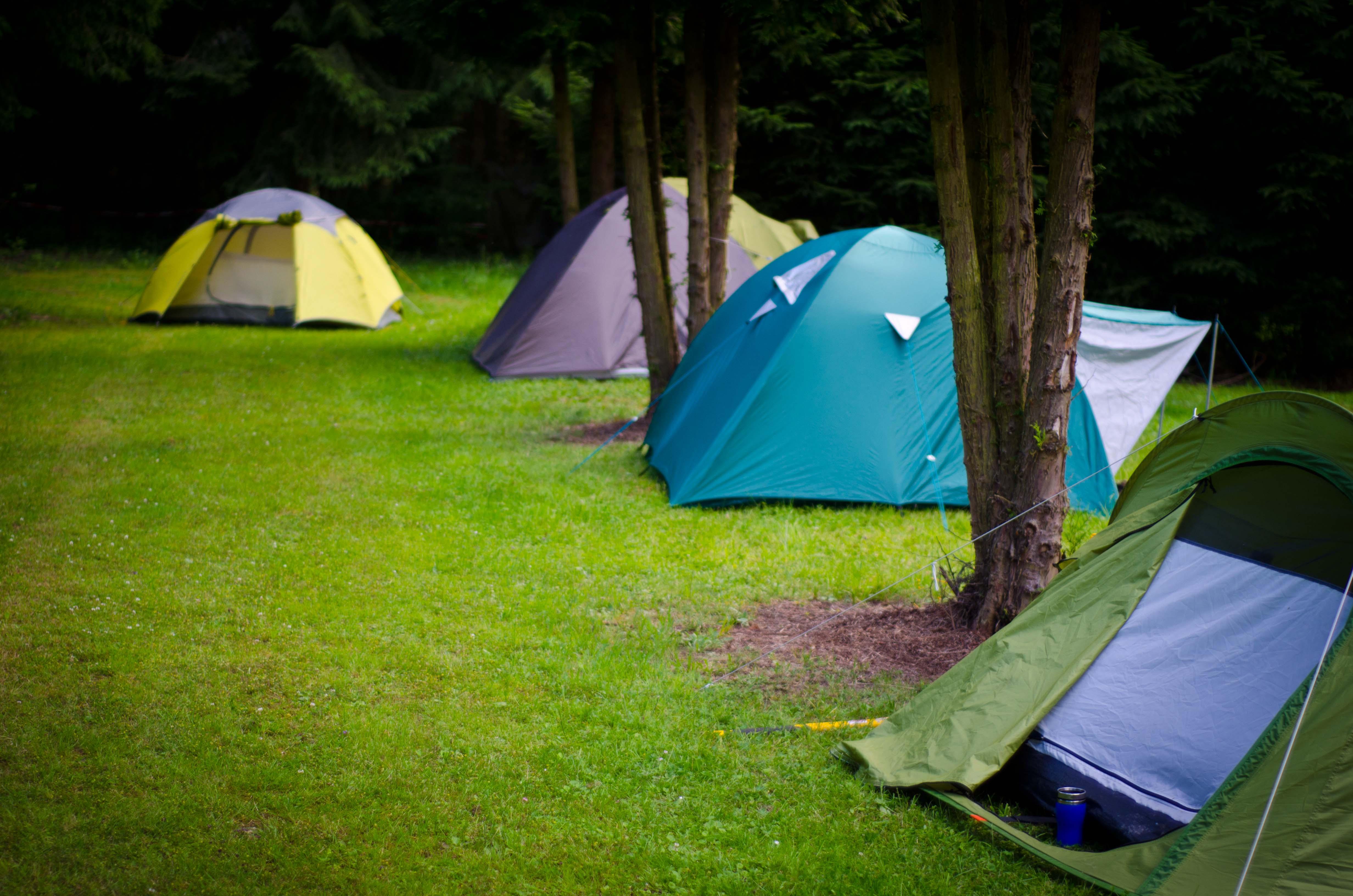 Wildniscamp Survival Training
