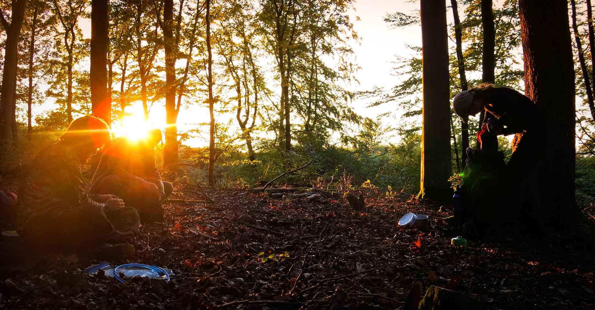 Wildnis Kurs Wald