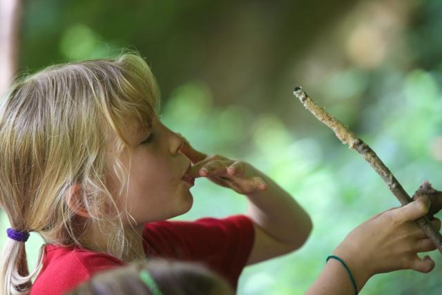 Survival für Kinder - Wildnis Kindergeburtstag - Outdoorerlebnis - Stockbrot backen