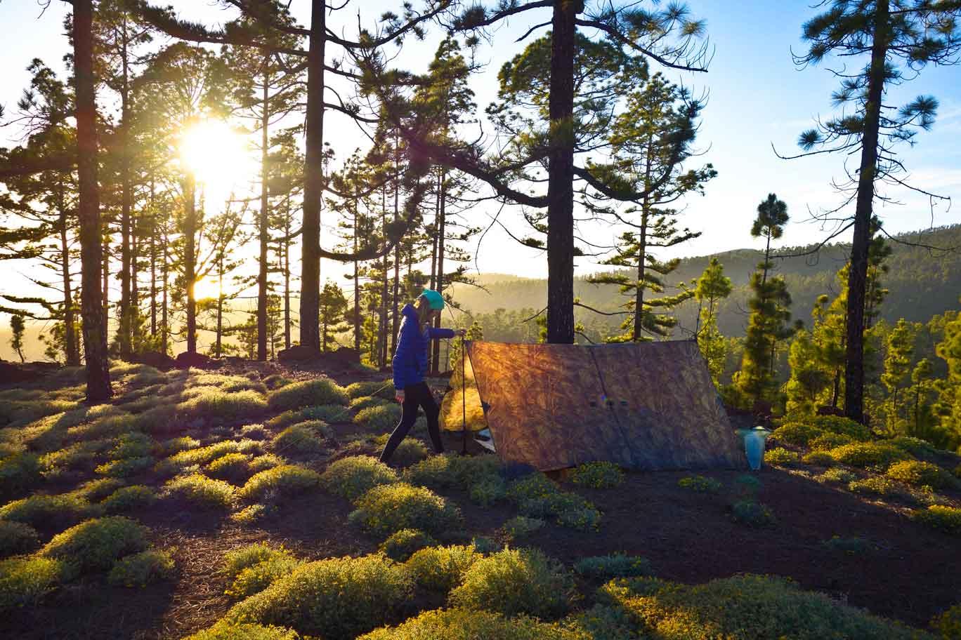 Outdoor Trekking Guide Ausbildung Tarpaufbau im Kieferwald