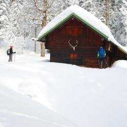 Outdoor Trekking Guide Ausbildung Schneeschuhwandern im Schwarzwald