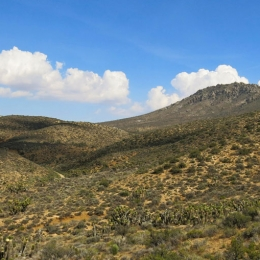 Outdoor Trekking Guide Ausbildung Wandern in trockenen Gebieten