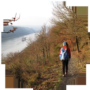 Wandern am Rheinhöhenweg