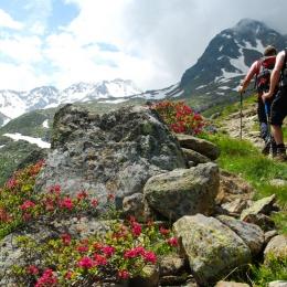 Outdoor Trekking Guide Ausbildung Bergwanderungen begleiten