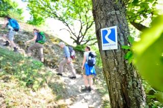 Kurs Orientierung Karte Kompass Rheinsteig