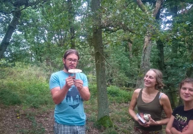 Wildnispaedagogik Weiterbildung Heilpflanzen Wildpflanzen