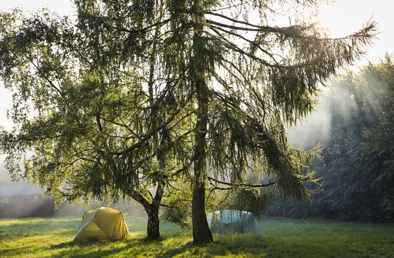 Wildnispädagogik Weiterbildung Wildnisschule Weltenwandler Camp