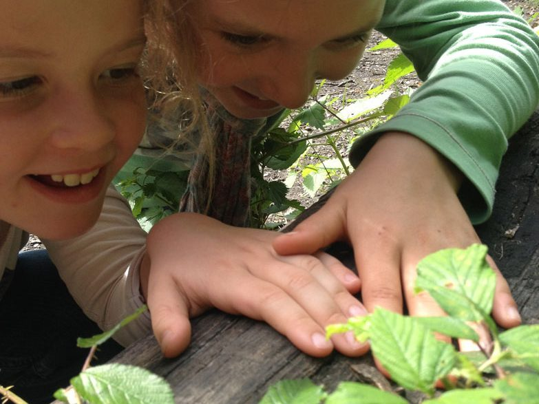 Waldläuferbande Wiesbaden Wildnisschule Weltenwandler